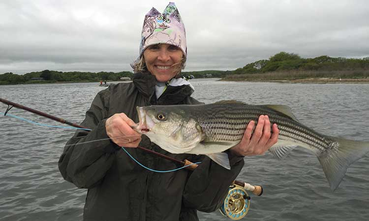 rhode-island-fly-fishing-striper-photo3