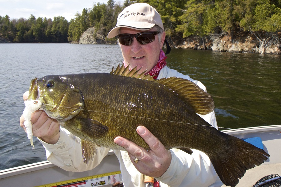 Recent fly fishing articles by the new fly fisher show for Smallmouth bass fly fishing